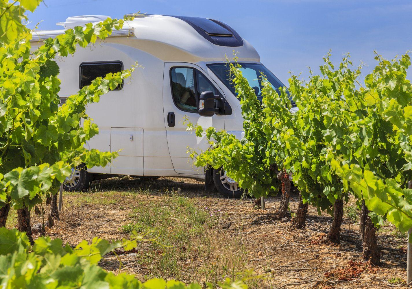 Wohnmobil-Stellplätze beim Winzer in Frankreich